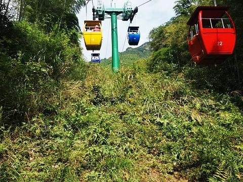 南山竹海旅游景点图片