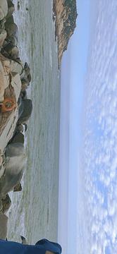 双月湾旅游景点攻略图
