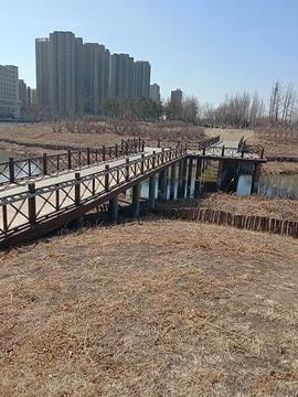 辽河碑林旅游景点攻略图