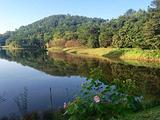 花乡茶谷旅游度假风景区