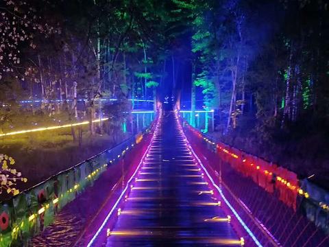长白山梦幻森林风景区旅游景点图片
