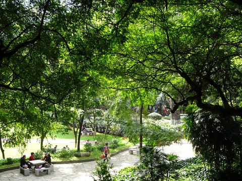 九龙池旅游景点攻略图