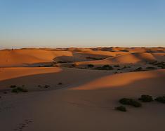 这一次,穿过沙漠。
