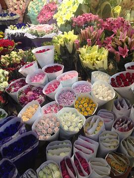 岔街1号花卉市场旅游景点攻略图