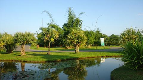 百花园旅游景点攻略图