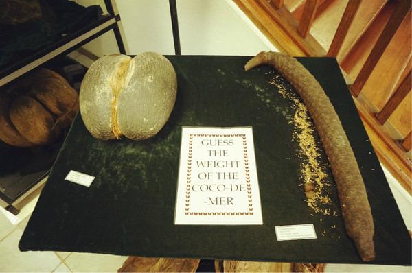 Diocesan Museum图片