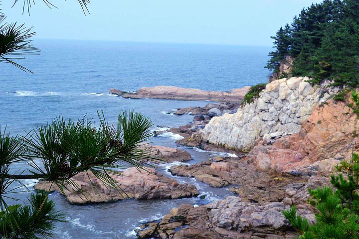 """""""刘公岛不仅仅是岛屿,也不仅仅是甲午海战的主战场,更是一处景色优美的避暑度假胜地。您一定不会虚度此行的_刘公岛""""的评论图片"""