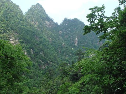 大明山景区旅游景点攻略图