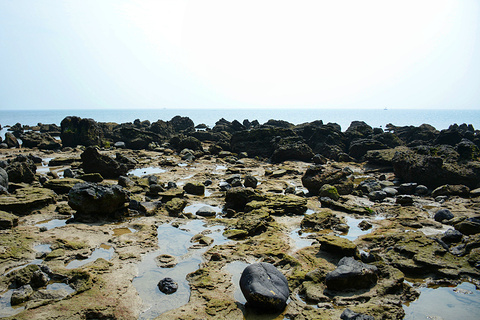 五彩滩旅游景点攻略图