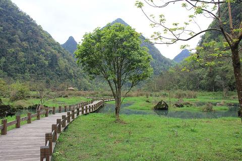翠谷湿地旅游景点攻略图
