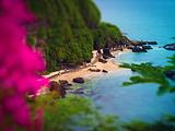 涠洲岛旅游景点攻略图片