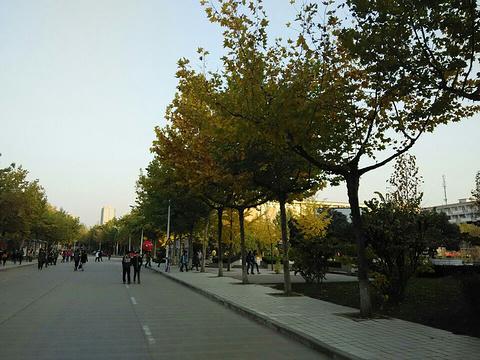 西北大学长安校区旅游景点图片