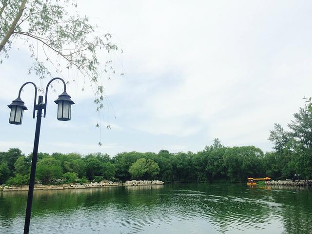 """""""最佳游览季节是夏季,满园的荷花开了真的很美_圆明园""""的评论图片"""