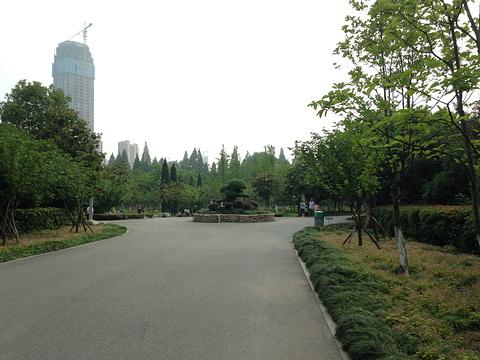 和平公园旅游景点图片