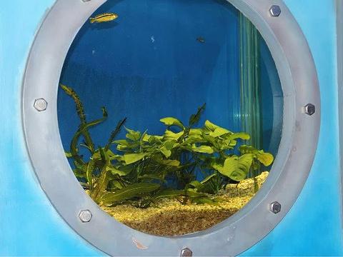 南昌动物园旅游景点图片