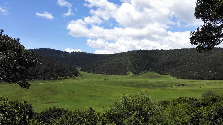 """""""普达措国家森林公园是必去的,其他的两个松赞林寺和纳帕海有时间的也可以去看看,我们由于时间有限,..._普达措""""的评论图片"""