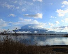 日本南来北往之旅——富士山北海道