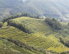 中国最美的上堡梯田