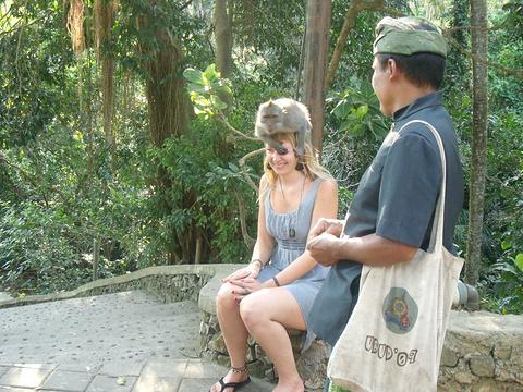 西双版纳猴山旅游景点攻略图