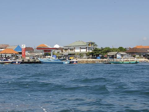 海龟岛旅游景点图片