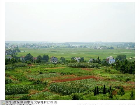 屈原墓旅游景点图片