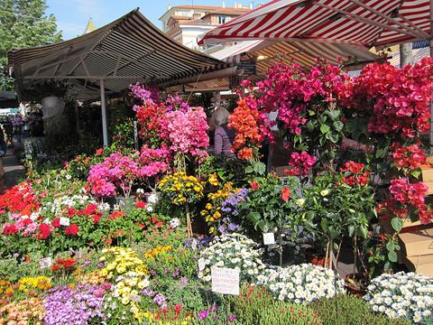 Marche aux fleurs旅游景点攻略图