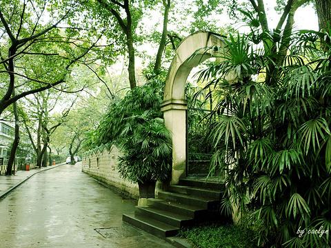 鹅岭公园旅游景点图片