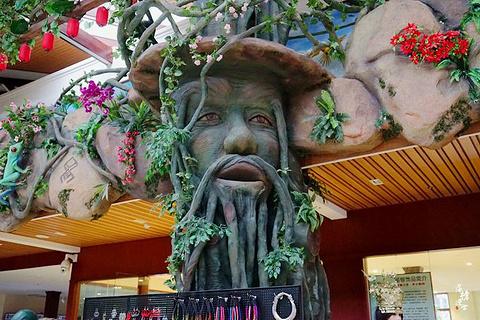 呀诺达雨林景区旅游景点攻略图