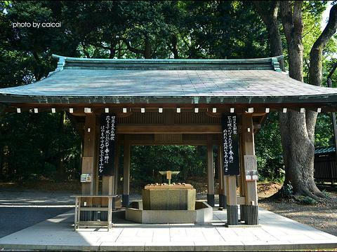明治神宫旅游景点图片