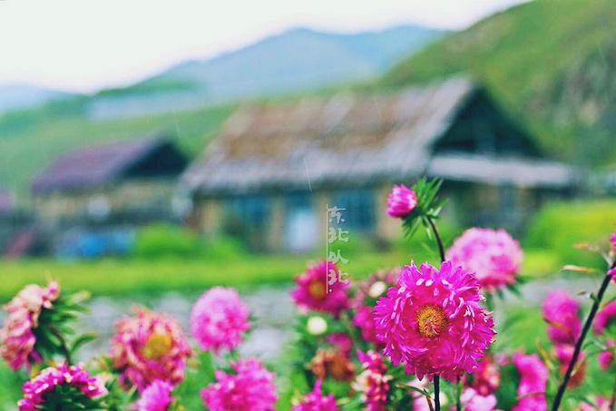 太平村图片