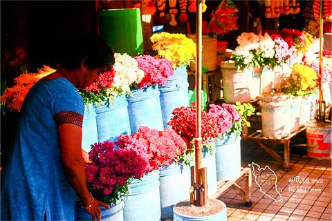 槟城旅游景点图片