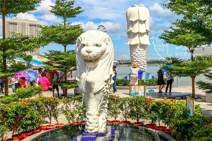 """""""但从鱼尾狮公园拍过来的鱼尾狮雕像灯光和金沙酒店夜景应该很美吧,我猜,只好下回再来拍咯_鱼尾狮公园""""的评论图片"""