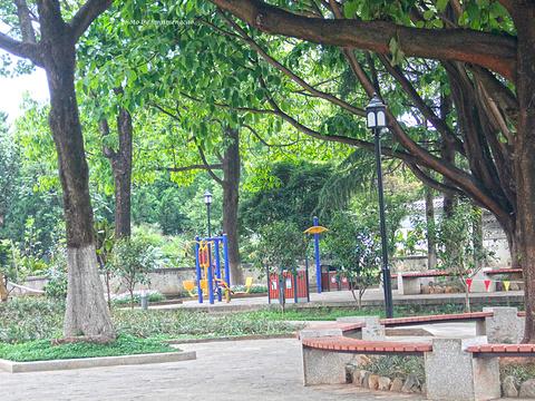 玉洱公园旅游景点图片