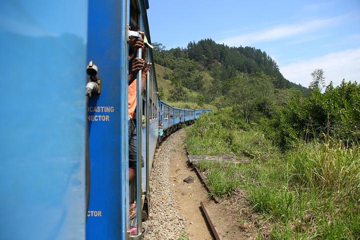 """""""传说中的茶园火车,不过我感觉风景一般吧,但风景最赞的应该还是努沃勒埃利耶到埃勒那段,而我们没有去_茶园火车""""的评论图片"""