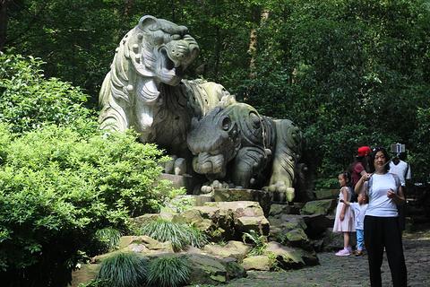 虎跑公园旅游景点攻略图