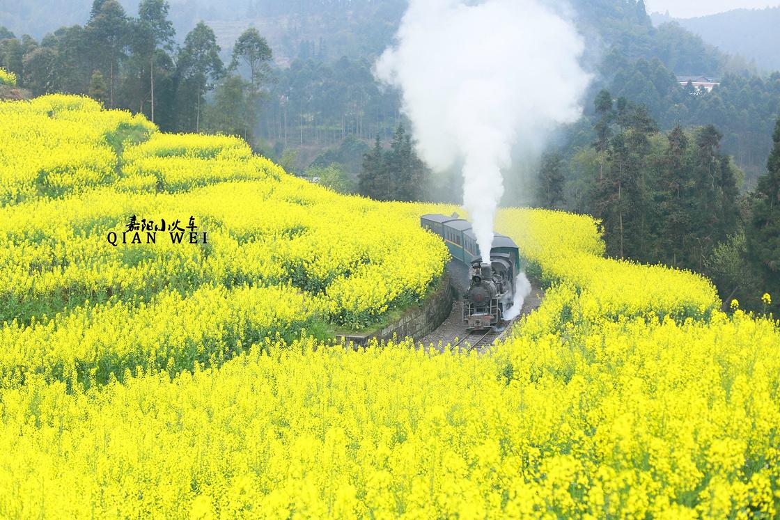 开往春天的嘉阳小火车