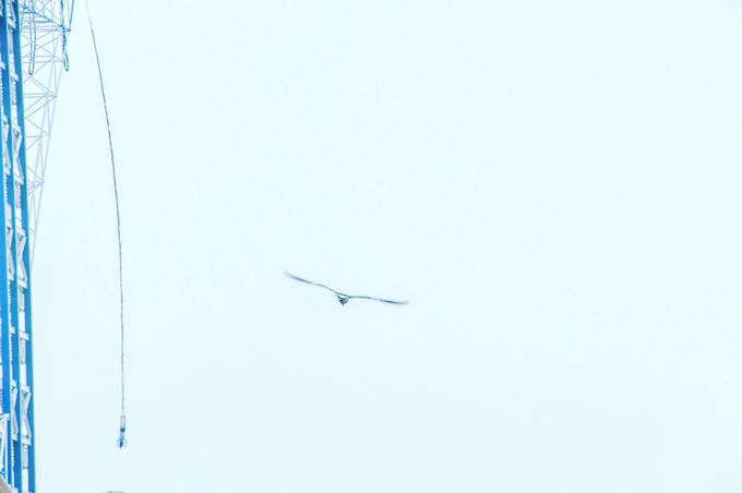 星海公园图片