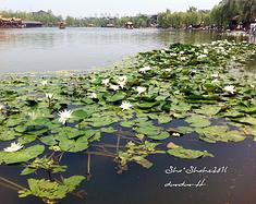 西安周边——周至水街❀沙·沙河❀一日游