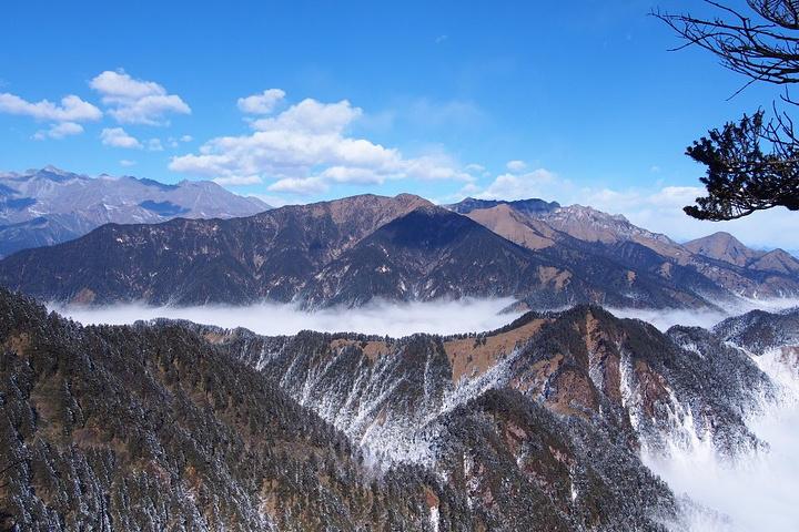 """""""寒冬里,在西岭雪山就可以享受雪花纷飞的视觉盛宴_西岭雪山""""的评论图片"""