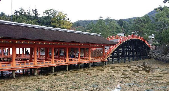 """""""海水很清澈,而且颜色就像翡翠一般_严岛神社""""的评论图片"""