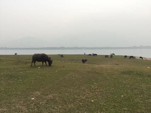 砚洲岛旅游景点图片