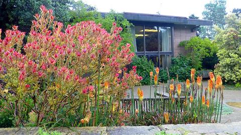 旧金山植物园旅游景点攻略图