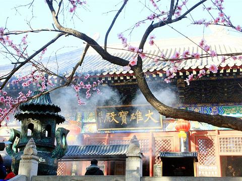 红螺寺旅游景点图片