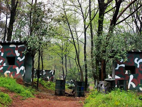 老山国家森林公园旅游景点图片