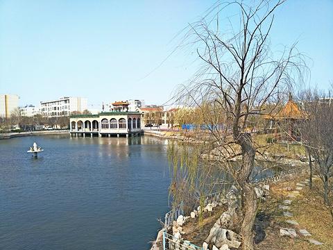 东辛公园旅游景点图片