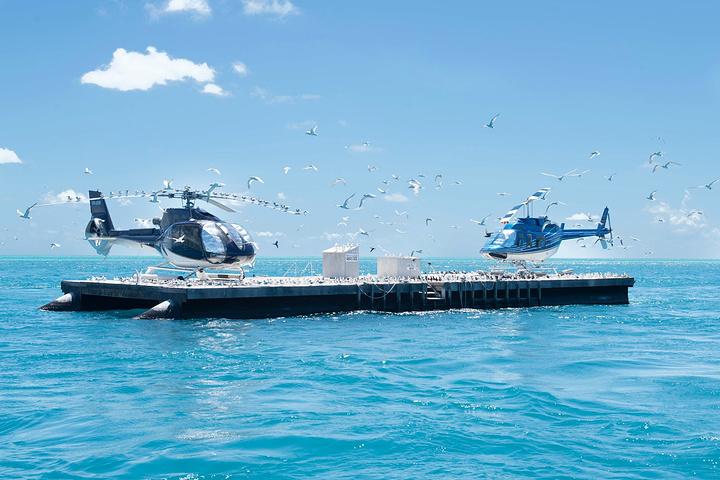"""""""【旅行社出海报价:出海+直升机约430刀..._大堡礁""""的评论图片"""