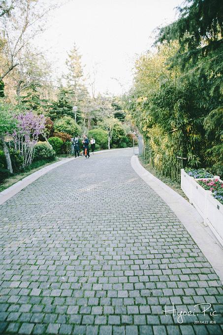 环翠楼公园图片