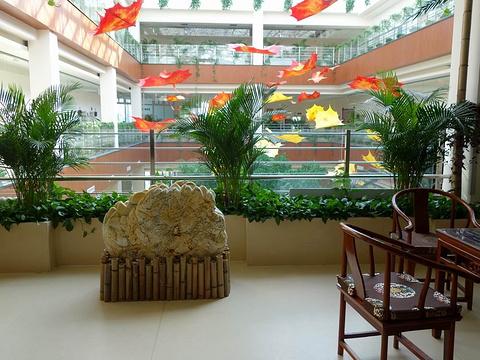 民政福利中心旅游景点图片