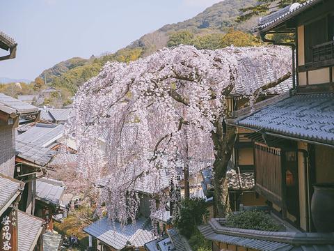 三年坂二年坂旅游景点图片