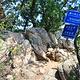 大杨山国家森林公园